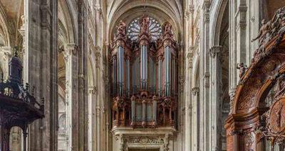Nederlandse orgelbouwer